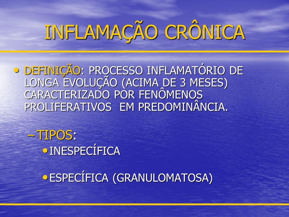 INFLAMAÇÃO CRÔNICA INESPECÍFICA Definição: Inflamação crônica comum a vários tipos de agentes, com resposta celular semelhante.