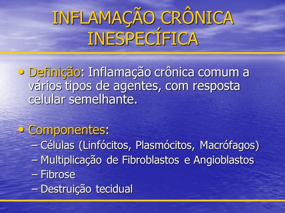 PADRÕES MORFOLÓGICOS DE INFLAMAÇÕES AGUDA E CRÔNICA Úlcera: Úlcera: –Conceito: Escavação profunda em superfície epitelial (pele; mucosa digestiva, brônquica, oral etc.) –Exemplos – Úlcera gástrica, duodenal, varicosa, oral, laringica, brônquica, esofágica, intestinal.