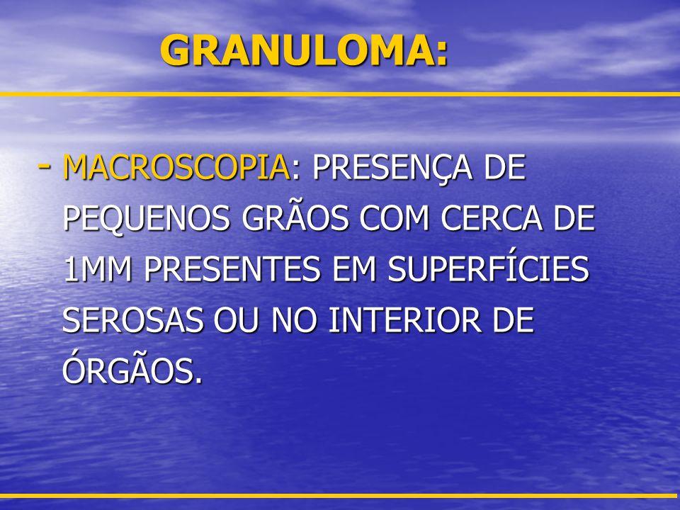 GRANULOMA: - MICROSCOPIA: REAÇÃO TECIDUAL ORGANIZADA CIRCUNSCRITA COM OU SEM NECROSE CENTRAL