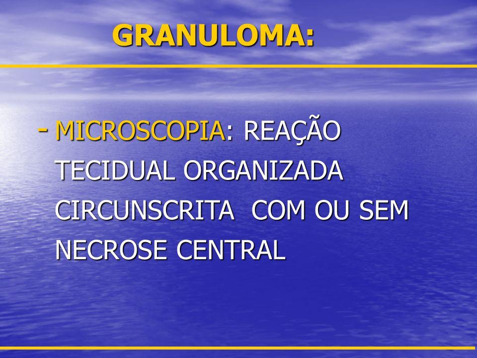 INFLAMAÇÃO CRÔNICA GRANULOMATOSA Componentes do Granuloma: Componentes do Granuloma: –Células Gigantes (Langhans e Corpo Estranho) –Macrófagos (Células epitelióides) –Linfócitos –Fibroblastos –Elementos alternativos: Necrose, Neutrófilos, Plasmócitos e Eosinófilos Necrose, Neutrófilos, Plasmócitos e Eosinófilos