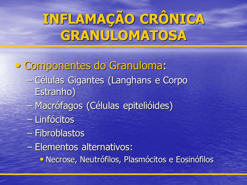 INFLAMAÇÃO CRÔNICA CÉLULAS PARTICIPANTES Hemáticas: Hemáticas: –Neutrófilos, Linfócitos (T e B), Eosinófilos, Monócitos, Basófilos.