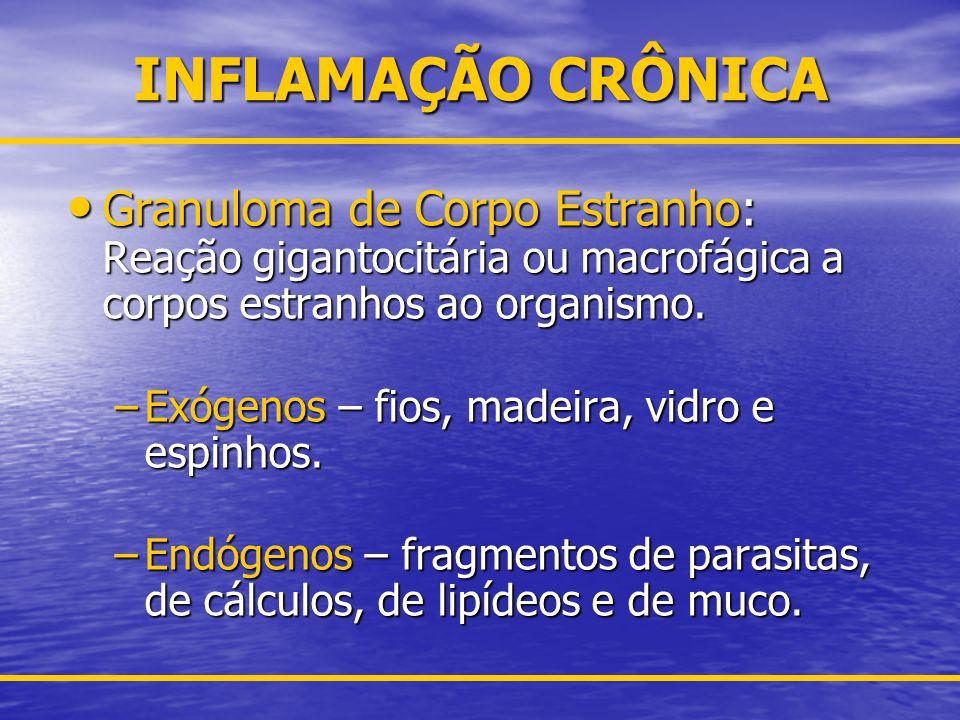 PADRÕES MORFOLÓGICOS DE INFLAMAÇÕES AGUDA E CRÔNICA Serosa: Predomínio de exsudato aquoso.