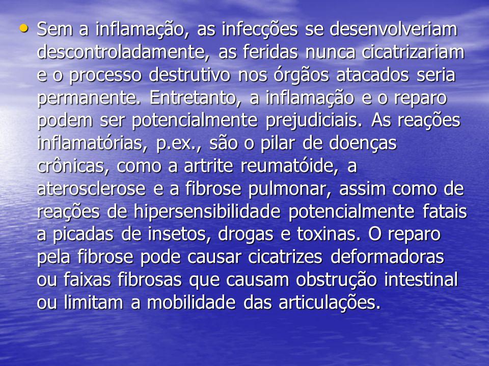 Sem a inflamação, as infecções se desenvolveriam descontroladamente, as feridas nunca cicatrizariam e o processo destrutivo nos órgãos atacados seria