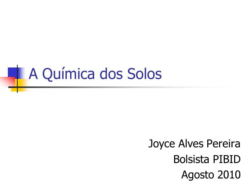 A Química dos Solos Joyce Alves Pereira Bolsista PIBID Agosto 2010