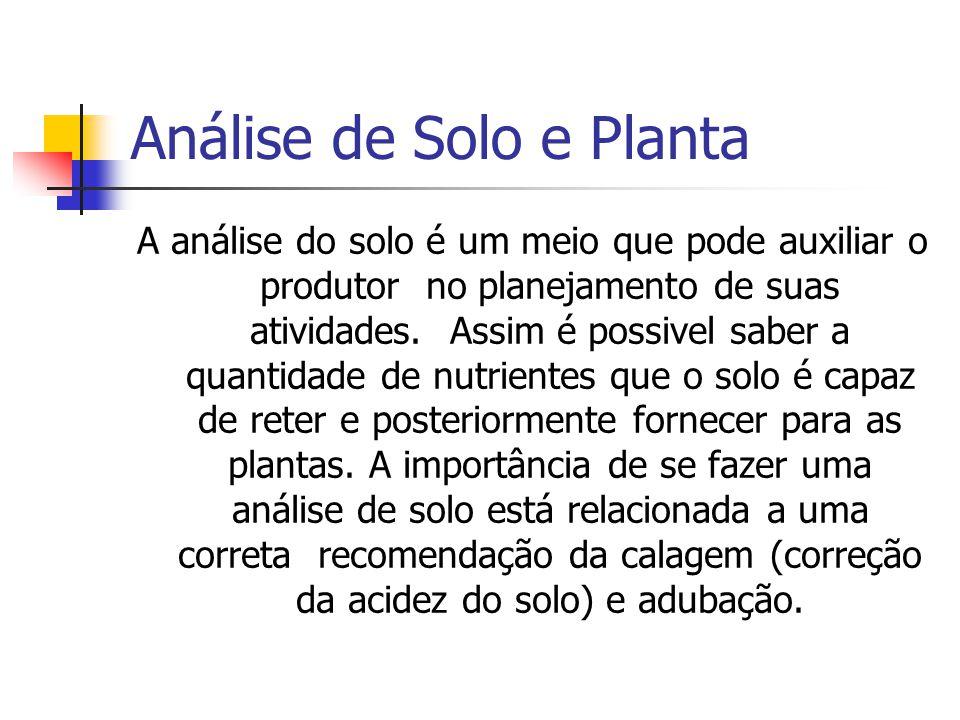 Análise de Solo e Planta A análise do solo é um meio que pode auxiliar o produtor no planejamento de suas atividades. Assim é possivel saber a quantid