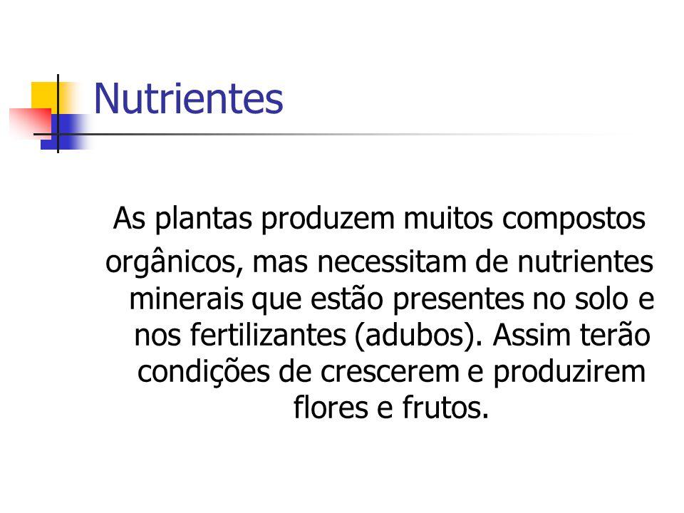 Nutrientes As plantas produzem muitos compostos orgânicos, mas necessitam de nutrientes minerais que estão presentes no solo e nos fertilizantes (adub