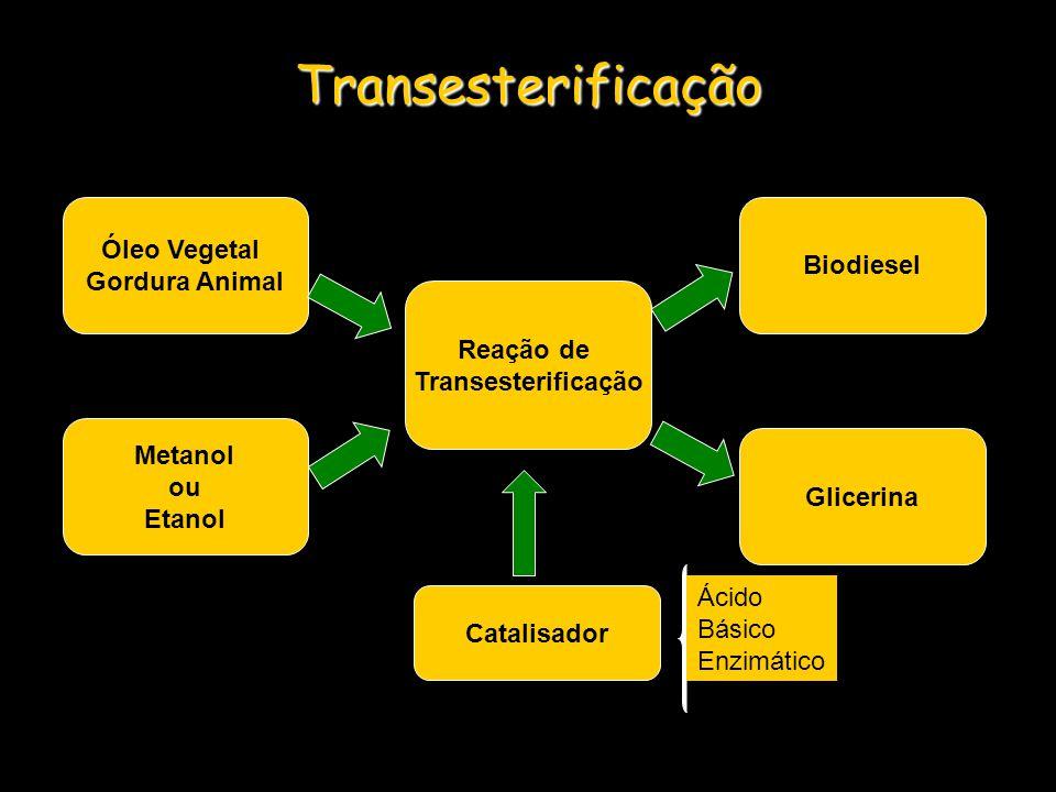 Transesterificação Catalisador Reação de Transesterificação Óleo Vegetal Gordura Animal Metanol ou Etanol Biodiesel Glicerina Ácido Básico Enzimático