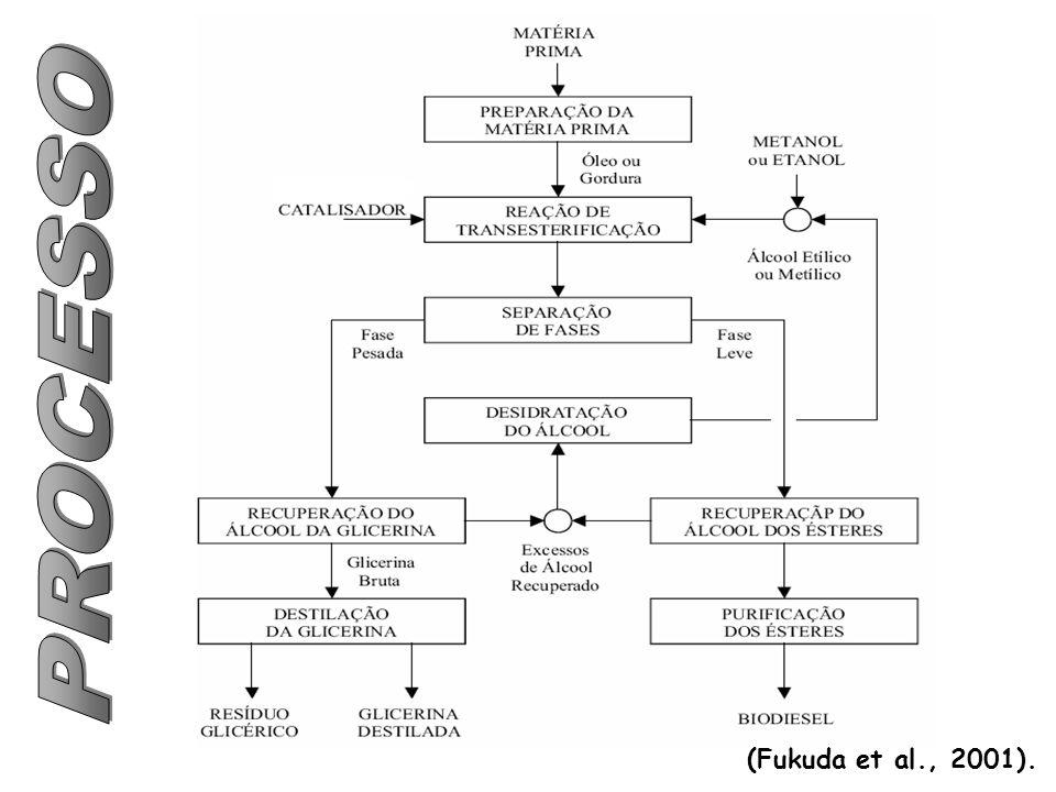 (Fukuda et al., 2001).