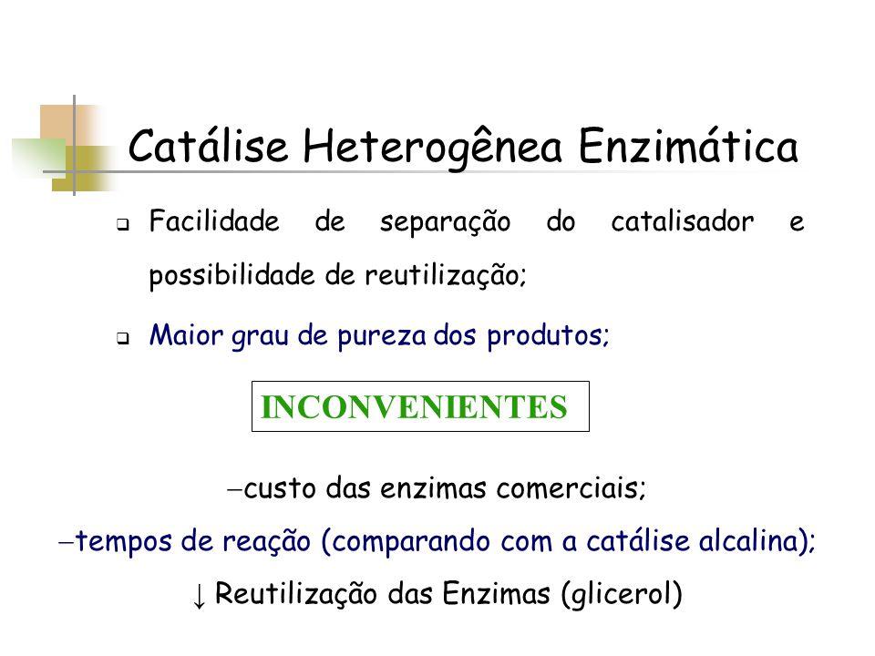 Catálise Heterogênea Enzimática Facilidade de separação do catalisador e possibilidade de reutilização; Maior grau de pureza dos produtos; custo das e