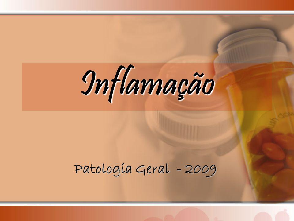 Inflamação Patologia Geral - 2009
