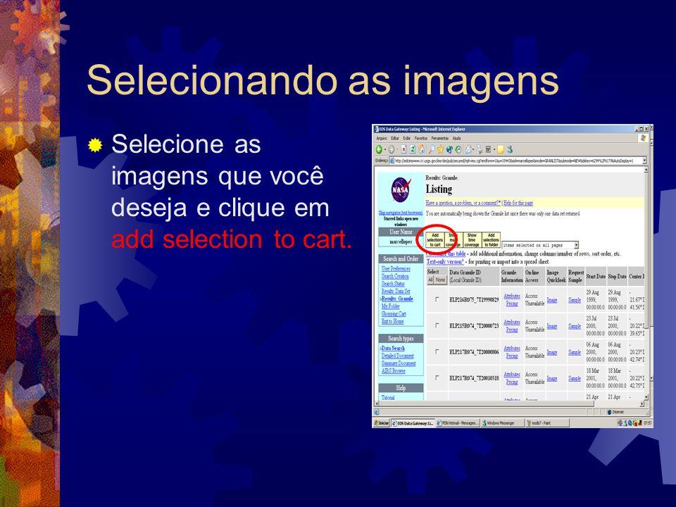 Selecionando as imagens Selecione as imagens que você deseja e clique em add selection to cart.
