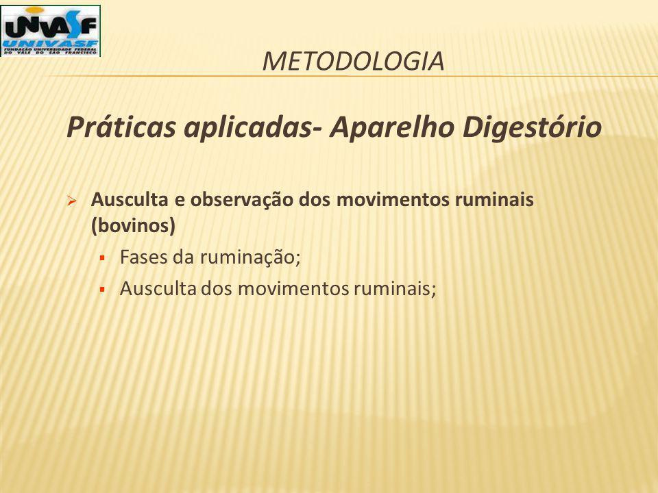METODOLOGIA Ausculta e observação dos movimentos ruminais (bovinos) Fases da ruminação; Ausculta dos movimentos ruminais; Práticas aplicadas- Aparelho