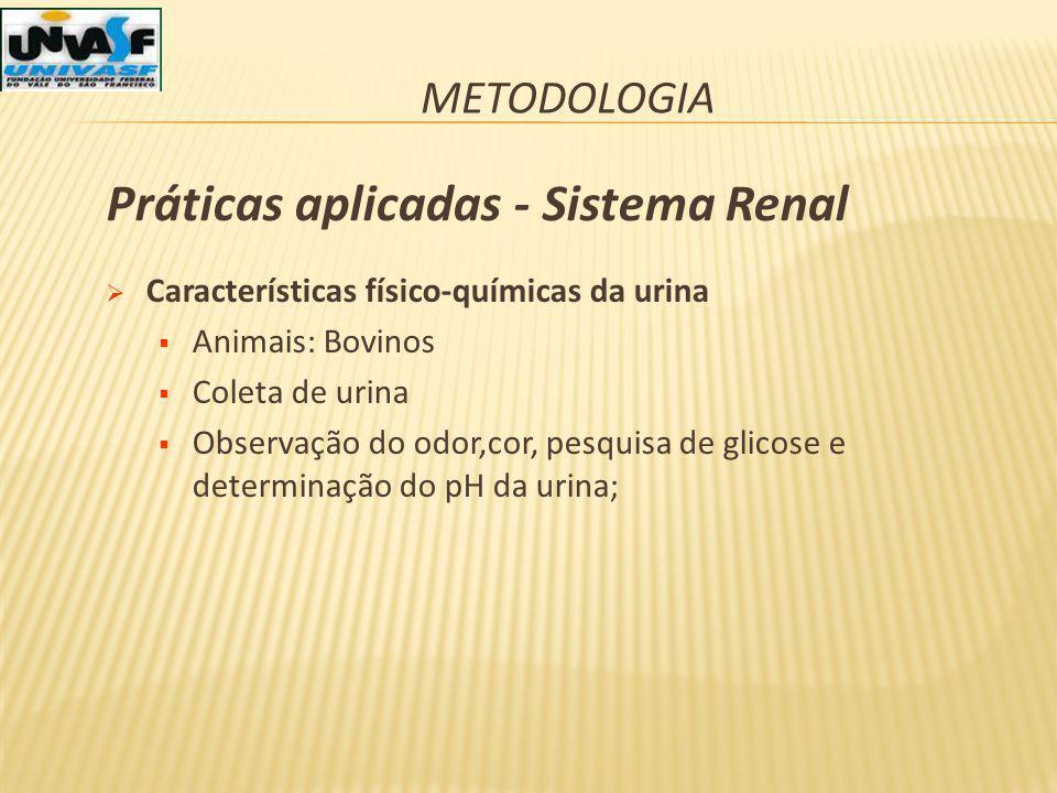 METODOLOGIA Características físico-químicas da urina Animais: Bovinos Coleta de urina Observação do odor,cor, pesquisa de glicose e determinação do pH