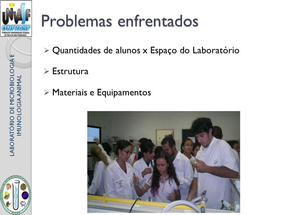 LABORATÓRIO DE MICROBIOLOGIA E IMUNOLOGIA ANIMAL Problemas enfrentados Quantidades de alunos x Espaço do Laboratório Estrutura Materiais e Equipamento