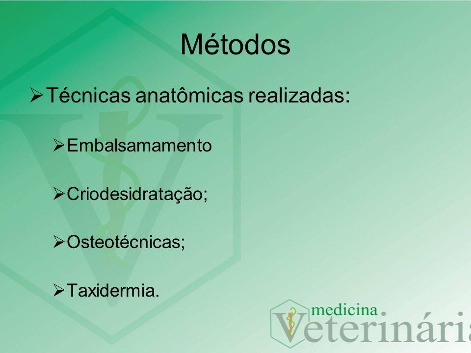 Métodos Técnicas anatômicas realizadas: Embalsamamento Criodesidratação; Osteotécnicas; Taxidermia.