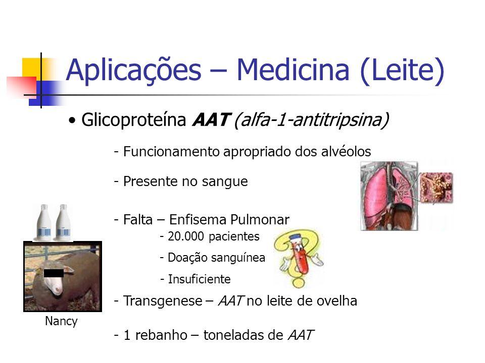 Aplicações – Medicina (Leite) Glicoproteína AAT (alfa-1-antitripsina) - Funcionamento apropriado dos alvéolos - Presente no sangue - Falta – Enfisema