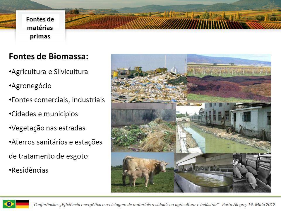 Fontes de Biomassa: Agricultura e Silvicultura Agronegócio Fontes comerciais, industriais Cidades e municípios Vegetação nas estradas Aterros sanitári