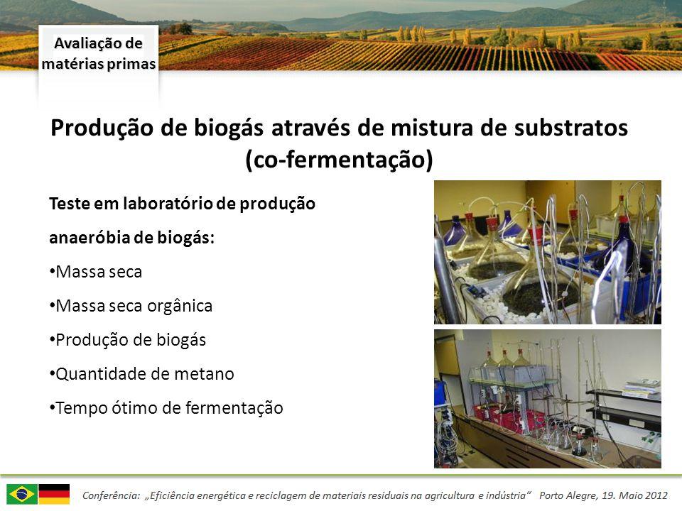 Produção de biogás através de mistura de substratos (co-fermentação) Teste em laboratório de produção anaeróbia de biogás: Massa seca Massa seca orgân