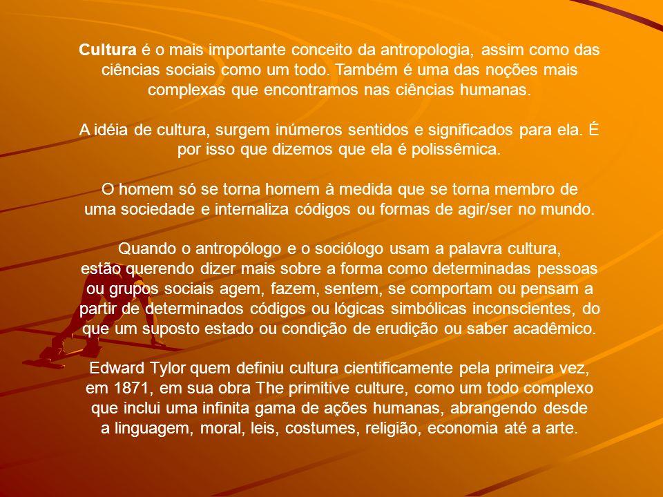 Cultura é o mais importante conceito da antropologia, assim como das ciências sociais como um todo.