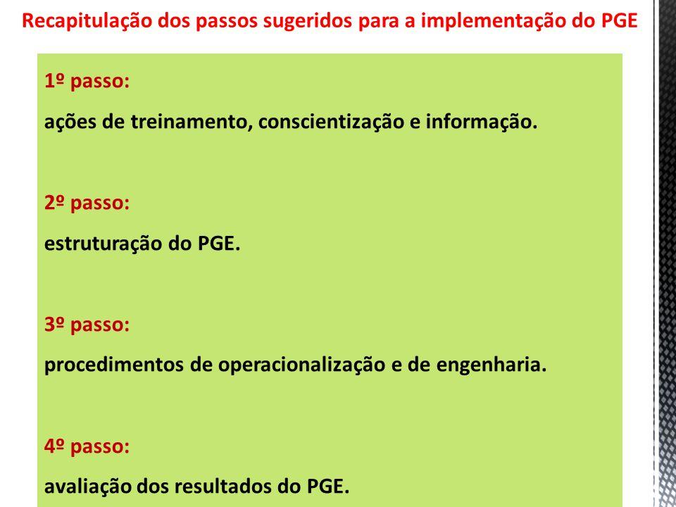 30 Recapitulação dos passos sugeridos para a implementação do PGE 1º passo: ações de treinamento, conscientização e informação. 2º passo: estruturação