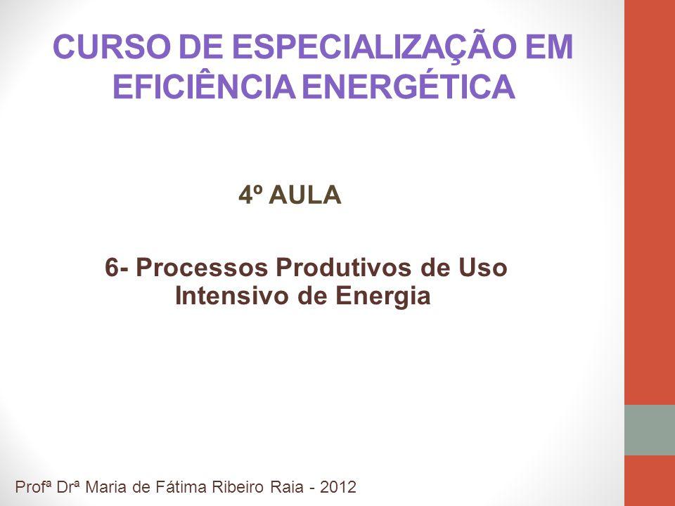 CURSO DE ESPECIALIZAÇÃO EM EFICIÊNCIA ENERGÉTICA 6- Processos Produtivos de Uso Intensivo de Energia Profª Drª Maria de Fátima Ribeiro Raia - 2012 4º