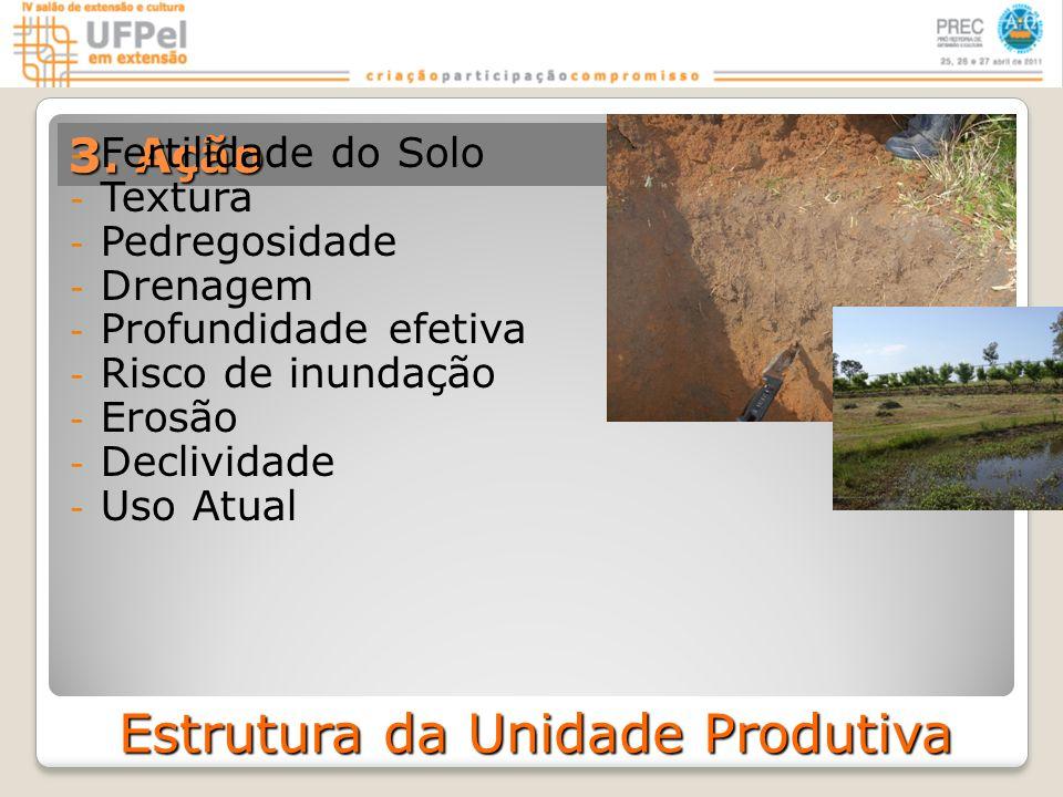 Estrutura da Unidade Produtiva - Fertilidade do Solo - Textura - Pedregosidade - Drenagem - Profundidade efetiva - Risco de inundação - Erosão - Declividade - Uso Atual
