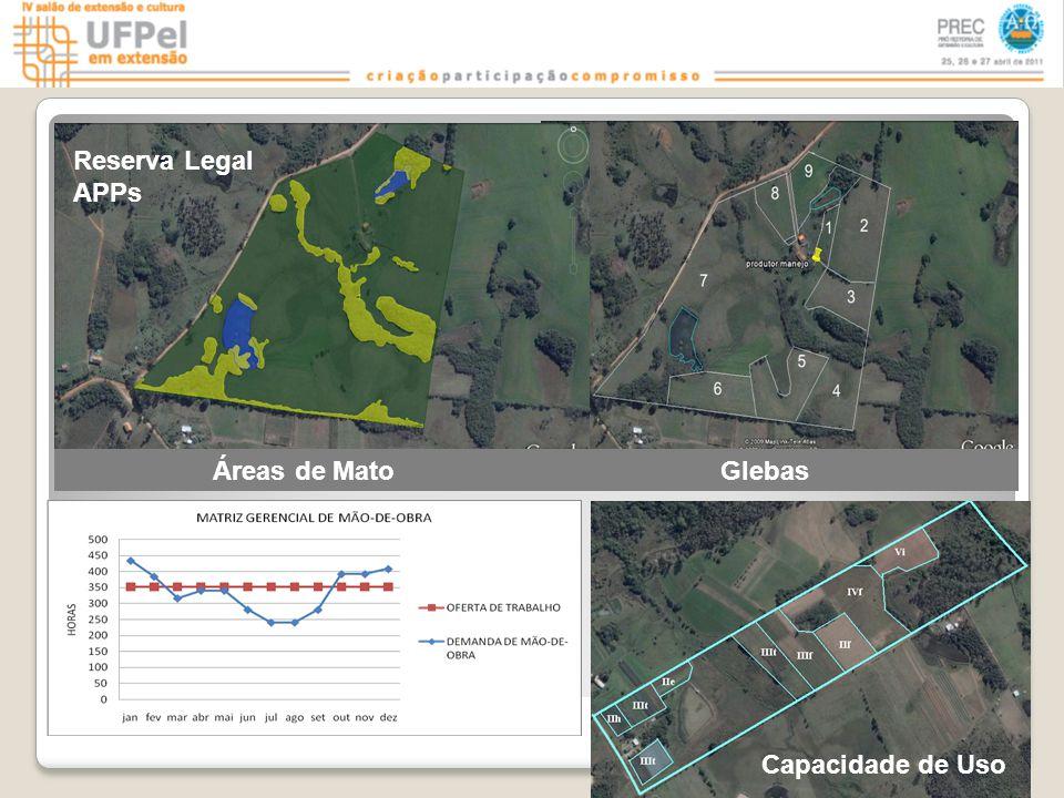 Áreas de Mato Glebas Capacidade de Uso Reserva Legal APPs
