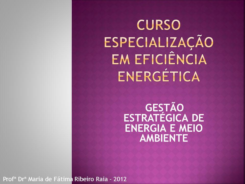 GESTÃO ESTRATÉGICA DE ENERGIA E MEIO AMBIENTE Profª Drª Maria de Fátima Ribeiro Raia - 2012