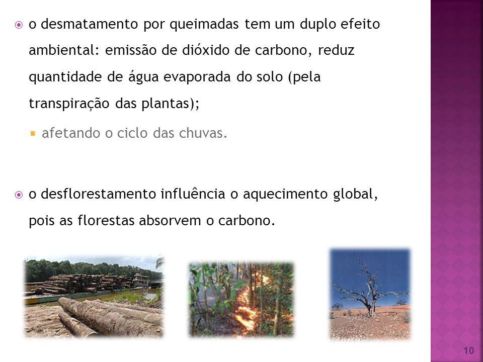 o desmatamento por queimadas tem um duplo efeito ambiental: emissão de dióxido de carbono, reduz quantidade de água evaporada do solo (pela transpiraç