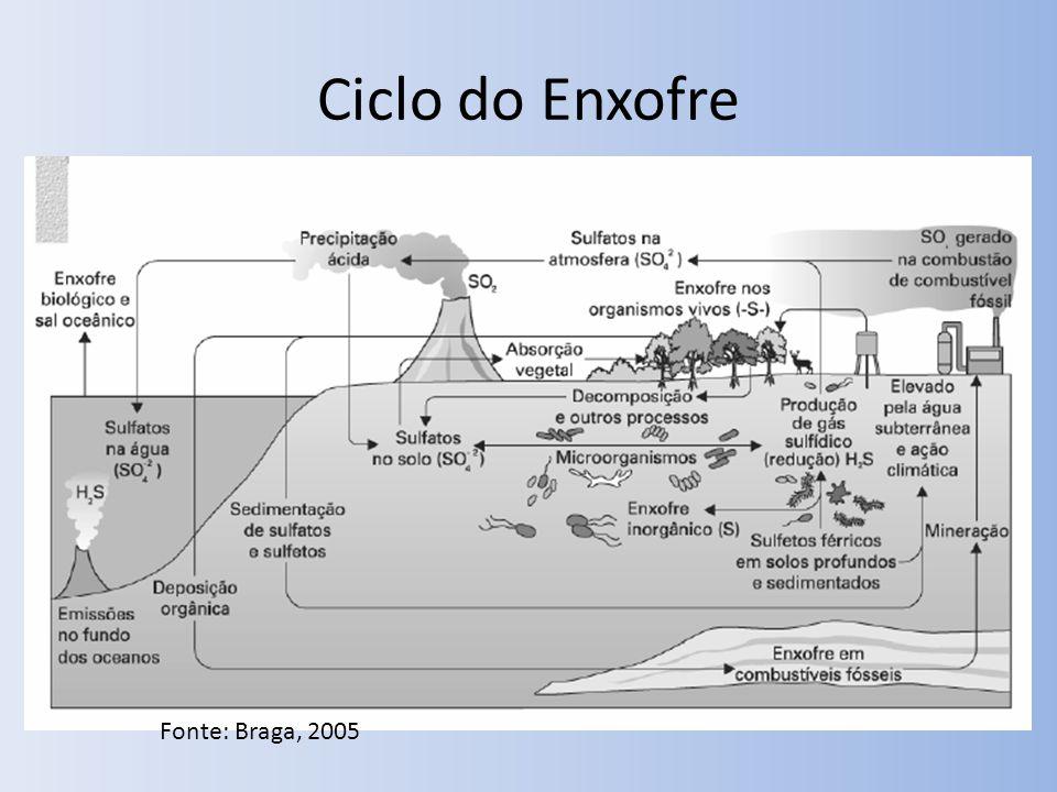 Ciclo do Enxofre Fonte: Braga, 2005