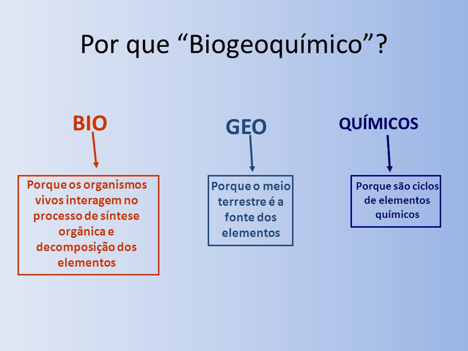 Por que Biogeoquímico? Porque os organismos vivos interagem no processo de síntese orgânica e decomposição dos elementos Porque o meio terrestre é a f
