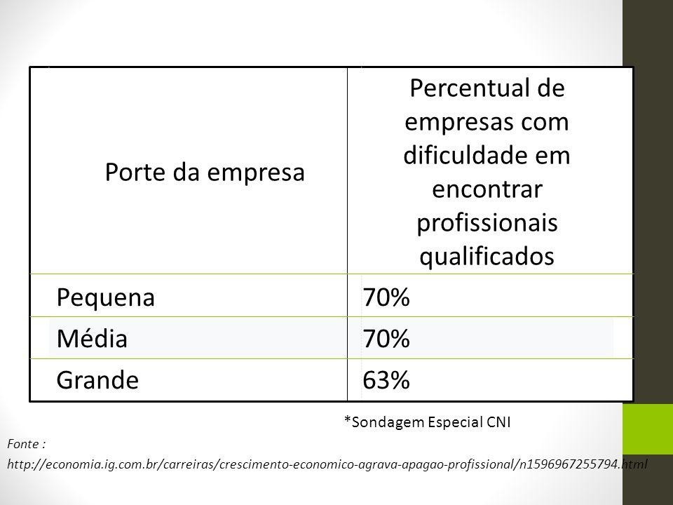 *Sondagem Especial CNI Fonte : http://economia.ig.com.br/carreiras/crescimento-economico-agrava-apagao-profissional/n1596967255794.html Porte da empre
