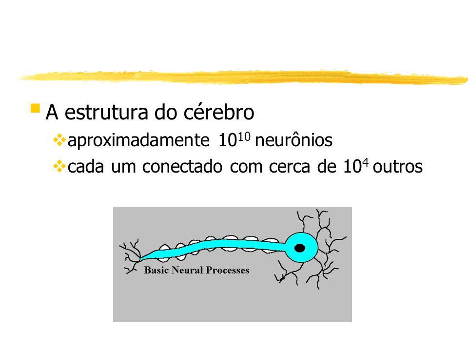 § A estrutura do cérebro vaproximadamente 10 10 neurônios vcada um conectado com cerca de 10 4 outros