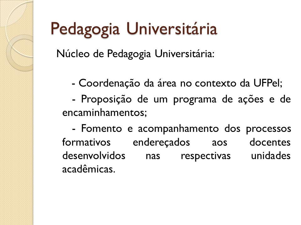 Pedagogia Universitária Núcleo de Pedagogia Universitária: - Coordenação da área no contexto da UFPel; - Proposição de um programa de ações e de encam