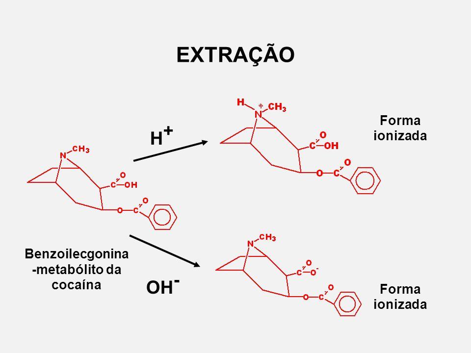 EXTRAÇÃO Benzoilecgonina -metabólito da cocaína H+H+ OH - Forma ionizada
