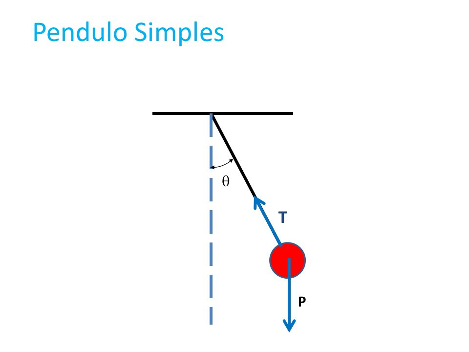 T P Pendulo Simples