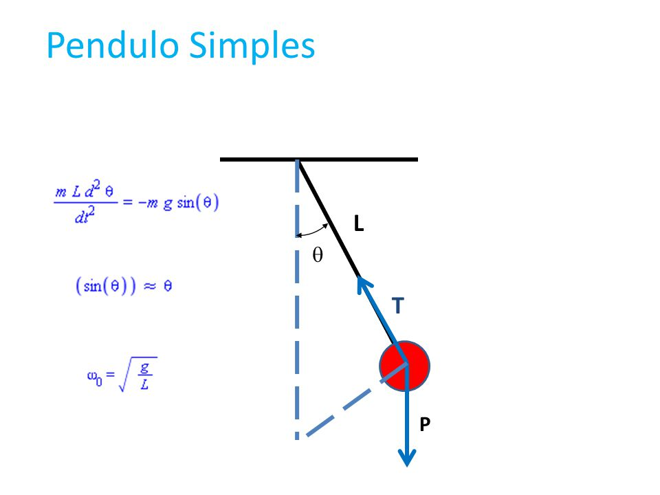 T P Pendulo Simples L