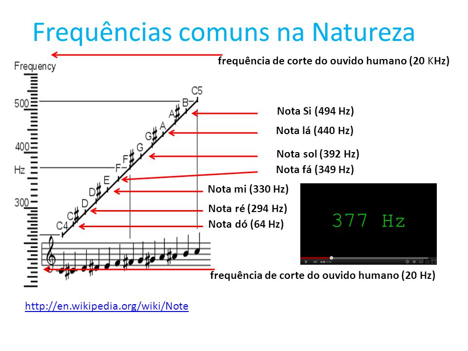 Frequências comuns na Natureza frequência natutal de uma taça (516 Hz) frequência de corte dos cães (60 KHz) frequência das ondas sísmicas observada no terremoto do México (0,5 Hz).