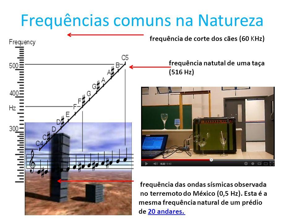 Frequências comuns na Natureza frequência natutal de uma taça (516 Hz) frequência de corte dos cães (60 KHz) frequência das ondas sísmicas observada n