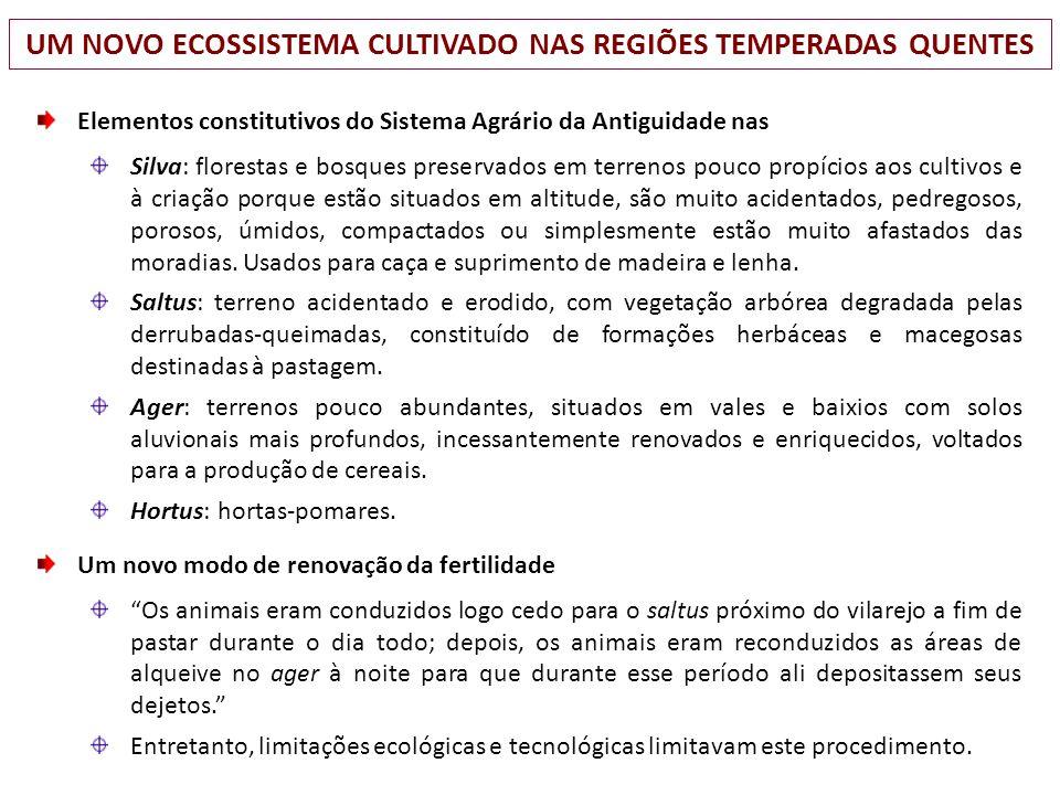 UM NOVO ECOSSISTEMA CULTIVADO NAS REGIÕES TEMPERADAS QUENTES Elementos constitutivos do Sistema Agrário da Antiguidade nas Silva: florestas e bosques