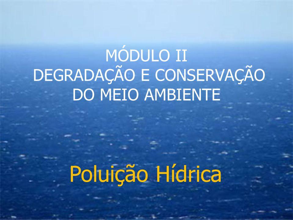 Poluição Hídrica MÓDULO II DEGRADAÇÃO E CONSERVAÇÃO DO MEIO AMBIENTE