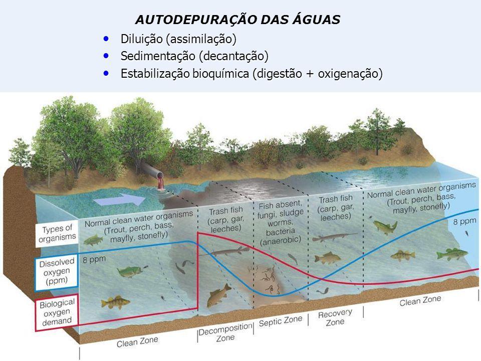 Diluição (assimilação) Diluição (assimilação) Sedimentação (decantação) Sedimentação (decantação) Estabilização bioquímica (digestão + oxigenação) Est