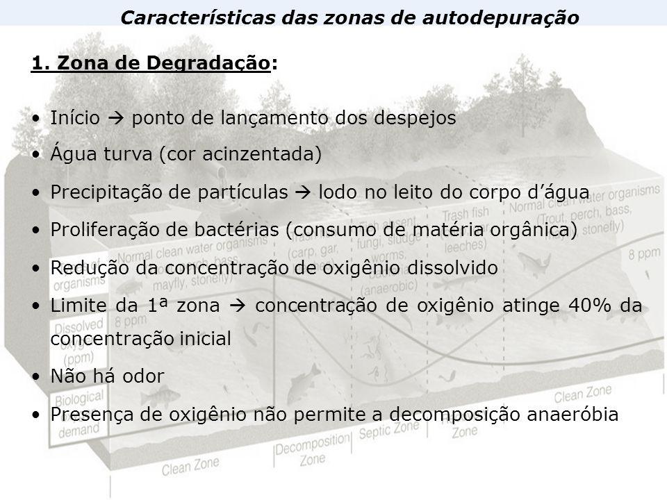 Características das zonas de autodepuração 1. Zona de Degradação: Início ponto de lançamento dos despejos Água turva (cor acinzentada) Precipitação de