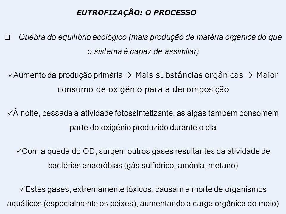 EUTROFIZAÇÃO: O PROCESSO Quebra do equilíbrio ecológico (mais produção de matéria orgânica do que o sistema é capaz de assimilar) Aumento da produção