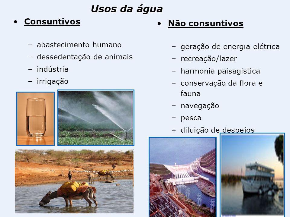 Consuntivos –abastecimento humano –dessedentação de animais –indústria –irrigação Não consuntivos –geração de energia elétrica –recreação/lazer –harmo