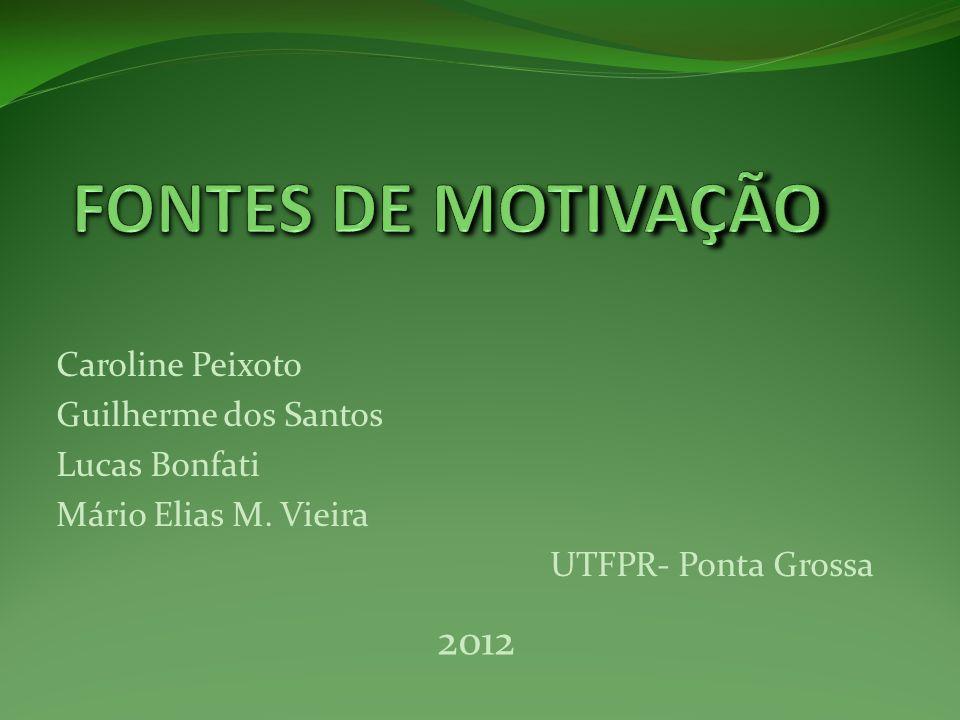 Caroline Peixoto Guilherme dos Santos Lucas Bonfati Mário Elias M. Vieira UTFPR- Ponta Grossa 2012