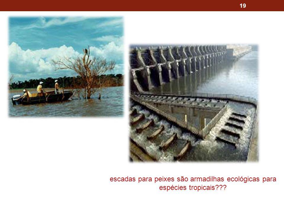 19 escadas para peixes são armadilhas ecológicas para espécies tropicais???