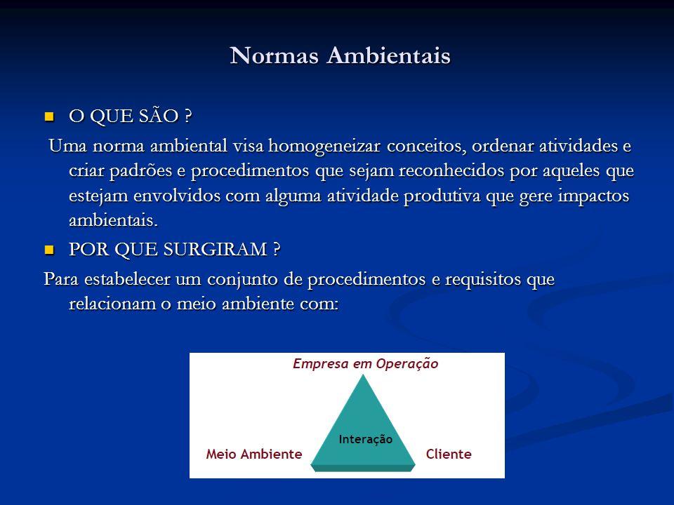 QUÍMICA E PETROQUÍMICA OPP COPESUL PETROQUÍMICA CUYO (ARGENTINA) HENKEL SIDERURGIA USIMINAS BELGO-MINEIRA TRATAMENTO DE EFLUENTES CETREL VIDROS CEBRACE BLINDEX REFERÊNCIAS BUREAU VERITAS EMPRESAS CERTIFICADAS ISO 14001 PNEUS FIRESTONE PIRELLI