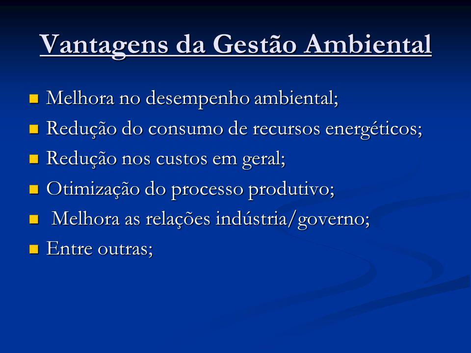 Vantagens da Gestão Ambiental Melhora no desempenho ambiental; Melhora no desempenho ambiental; Redução do consumo de recursos energéticos; Redução do consumo de recursos energéticos; Redução nos custos em geral; Redução nos custos em geral; Otimização do processo produtivo; Otimização do processo produtivo; Melhora as relações indústria/governo; Melhora as relações indústria/governo; Entre outras; Entre outras;