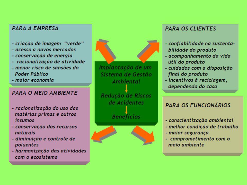 Normas ISO 14000 para organizações Normas ISO 14000 para organizações
